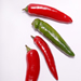 Red and green serrano chilies