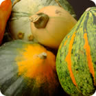 Winter Squash Types Article - Allrecipes.com