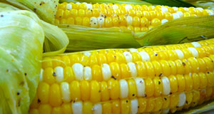 Great Grilled Corn