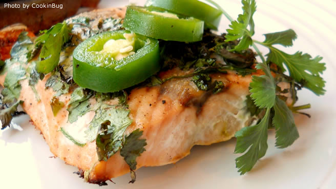 Grilled Salmon with Cilantro Sauce