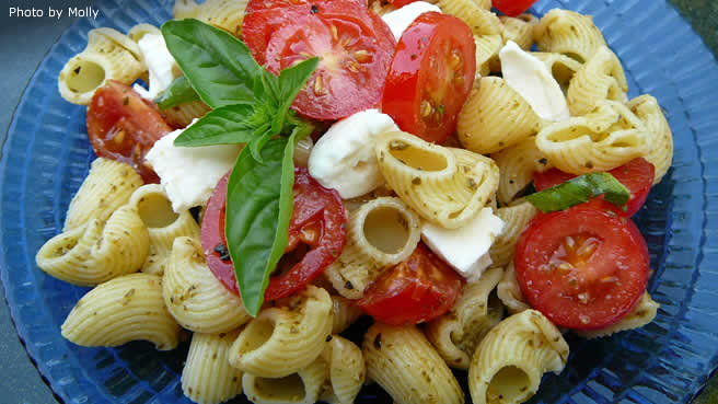 Easy plain pasta salad recipes