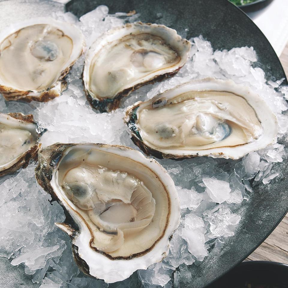Healthy Oyster