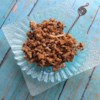 Cinnamon Maple Granola with Coconut Recipe - Oats and coconut flakes are baked in a mixture of honey, maple sugar, maple syrup, vanilla, and, of course, cinnamon, for a quick and easy homemade granola.