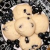 Blueberry Cookies Recipe - Here's a recipe from Upstate New York.  Very simple to make and my family really enjoys them.