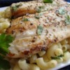 Pan Seared Lemon Tilapia with Parmesan Pasta Recipe - Tender tilapia fillets are seasoned with lemon and herbs, and served over Parmesan pasta for a light, fresh taste.