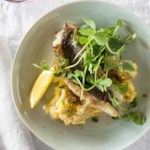Black Sea Bass with Summer Squash Polenta