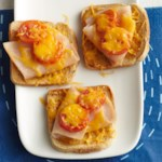 Mini Cheese and Turkey Melts