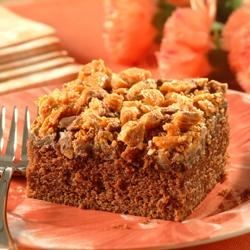 Crumble-Topped Chocolate Peanut Butter Cake Recipe - Looking for a new dessert for your family? This Crumble-Topped Chocolate Peanut Butter Cake has the perfect combination of flavors and is topped with tasty candy crunchiness. Great for all occasions.