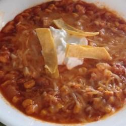 Tortilla Soup - Salsa Influenced