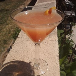 Greyhound Cocktail Recipe and Video - The refreshing mixture of grapefruit juice and gin makes the greyhound an ideal choice for a summertime refresher.