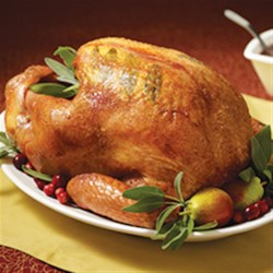 Maple Basted Roast Turkey with Cranberry Pan Gravy Recipe - Roast turkey is basted with maple syrup for a sweet glaze; cranberry juice and sweetened dried cranberries bring a sweet-tart fruit dimension to the pan gravy.