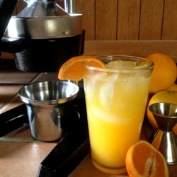 Orange Crush! Fresh Squeezed Orange and Vodka Cocktail Recipe - Freshly squeezed orange juice is mixed with orange-flavored vodka and triple sec in this orange crush cocktail. Serve on a warm summer day for a little refreshment.
