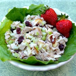 Cranberry and Turkey Salad Recipe - Leftover turkey, dried cranberries, and almonds make a terrific filling for croissants, pita pockets, or plain white bread.