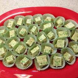 Pistachio Fudge Recipe - Marshmallow creme and confectioners' coating are blended with sugar and evaporated milk.  Then chopped pistachios and green food coloring complete this fudge that's perfect for the holidays.