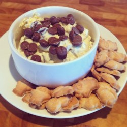 Chocolate Chip Cheesecake Dip Recipe - Chocolate and cheesecake in dip form. Need more be said?