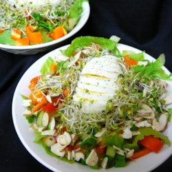 Bird's Nest Salad Recipe - Alfalfa sprouts create a nest for honey-glazed almonds in this Easter recipe.