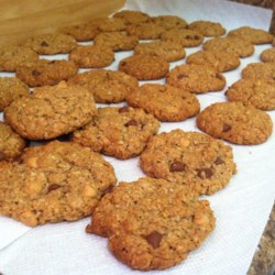 Lactation Cookies Recipe - These cookies feature brewers' yeast, wheat germ, flax seed, and whole oats to help support milk production for lactating mothers.