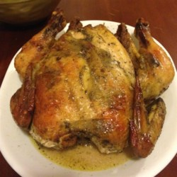 Jill's Herb Roasted Chicken Recipe - This oven-roasted chicken is easy to prepare, very moist, and delicious.