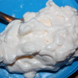 Eggless Mayonnaise Recipe - Powdered milk, lemon juice, and canola oil create a soy- and egg-free mayonnaise substitute.