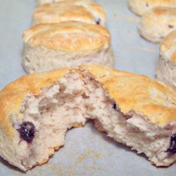 Awesome Yogurt Biscuits  Recipe - If you have biscuit mix and a carton of yogurt, you've got biscuits. These have only 2 ingredients and are done in just a few minutes.