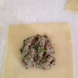 Meat and Spinach Ravioli Filling