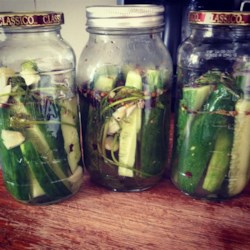 Lazy Housewife Pickles