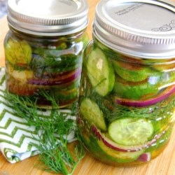 Bill's Spicy Refrigerator Pickles Recipe - Spicy pickles have never been so simple! Just follow this recipe for homemade pickles made with garlic, dill, and cayenne pepper.