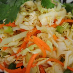 Asian Coleslaw Light Recipe - This Asian-style recipe coleslaw uses pre-packaged coleslaw mix and ramen noodles as well as an artificial sweetener in the dressing for a delicious alternative to the creamy summertime classic.