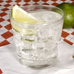 Gin and Tonic Recipe - Nothing says summer like the good ol' G&T!