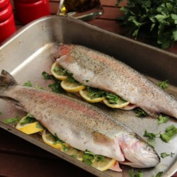 Baked Fresh Rainbow Trout Recipe - Baked whole fresh trout seasoned with dill and thyme is a quick and easy meal that looks like a dish from a fancy restaurant. Serve with rice and vegetables.