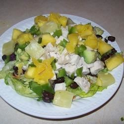 Chicken Salad in the Tropics Recipe - Lots of citrus, lime juice, sesame oil and honey - perfect for drizzling over a salad filled with chicken, mangos, pineapple and avocado.