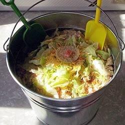 Bucket Salad
