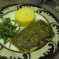 Stephan's Broiled Salmon Pesto Photos - Allrecipes.com