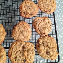 Protein Peanut Butter Chocolate Chip Cookies Recipe - Tasty cookies with a protein supplement, perfect for people who work out and are grossed out by protein shakes. Can substitute flavored supplements for a fruity twist.