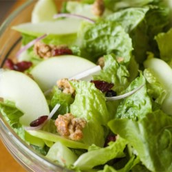 Apple Walnut Salad with Cranberry Vinaigrette Recipe - This salad contains lots of greens and sliced Red Delicious apples with a sprinkling of toasted almonds. But the dressing is a bit fancier. Cranberries, onions, sugar, and mustard are pureed in the blender with balsamic vinegar and oil, then added to the salad so that it perfectly coats every leaf of lettuce and slice of apple.