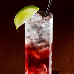 The Shaner Bill Recipe - 'The Shaner Bill', as this cocktail is named, is made with Fresca(R), vodka, and cranberry juice for a refreshing afternoon drink.