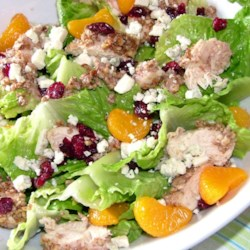 Pecan Crusted Chicken Salad Recipe - Juicy, warm chicken breasts baked in a crunchy pecan and garlic flavored coating sit on a bed of crisp romaine lettuce. Dried cranberries and mandarin oranges add a sweetness that is balanced by the tanginess of crumbled blue cheese. Ranch dressing ties the dish together to make a wonderfully light, filling salad.