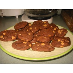 Devil's Food Peanut Butter Chip Cookies Recipe - This easy recipe makes the best cookies. I started making these at Christmas about 10 years ago, and now I think my family would disown me if I did not make them.