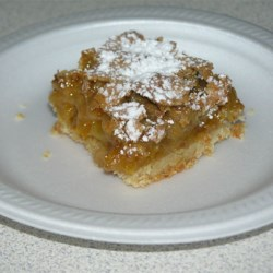 Apricot Squares Recipe - Rich bars with sweet apricots, these are sure to become one of your favorite desserts.