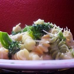 Broccoli Chicken Fettuccini Alfredo Recipe - A shortcut sauce of cream of mushroom soup with Parmesan and milk over chicken and broccoli.