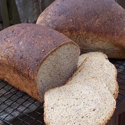 Westrup Whole Wheat Bread Recipe - A nutritious, well-flavored yeast bread, rich with whole wheat, wheat germ and sesame seeds.  Powdered milk contributes protein to the mix.
