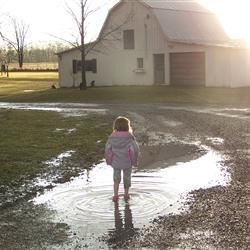 My 3year old stomping February puddles