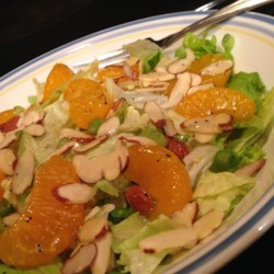 Poppy Seed Salad Recipe - Use your blender to make a poppy seed dressing to top a salad of lettuce, mandarin oranges, green onions, and almonds with this recipe.