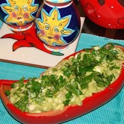 Wasabi Guacamole Recipe - This full-bodied guacamole tastes great on grilled hamburgers, chicken breasts, or even potato chips.  The wasabi powder adds a great twist, but you can substitute prepared horseradish if desired.