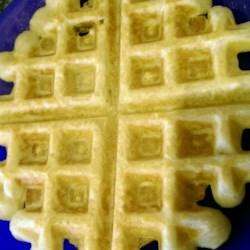 Whole Wheat Coconut Oil Waffles Recipe - These whole wheat waffles made with coconut oil are delicious and freeze well; a great way to start your day!