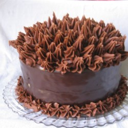 Elizabeth's Extreme Chocolate Lover's Cake Recipe - If you are a chocolate lover, you're gonna LOVE this!! The best chocolate cake I've ever concocted!  The ganache and cream cheese chocolate buttercream frosting are absolutely decadent!
