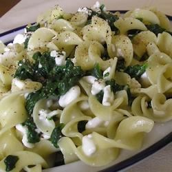 Spinach Cheese Pasta Recipe - Spinach is sauteed with garlic, then tossed with egg noodles and cottage cheese in this easy and delightful pasta dish.