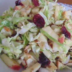 Chopped Brussels Sprout Salad Recipe - You'll love raw Brussels sprouts once you try them in a salad with cranberries, nuts, seeds, and apples in a light vinaigrette.