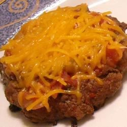 Tim's Famous Salsa Burgers Recipe - These tasty burgers are also very spicy. So please be careful when making this, and be sure to adjust seasonings to your taste.