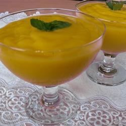 Tropical Mango Mousse Recipe - There's nothing quite so refreshing as mangos!  Preparation time: 5 minutes. This recipe is from The WEBB Cooks, articles and recipes by Robyn Webb, courtesy of the American Diabetes Association.